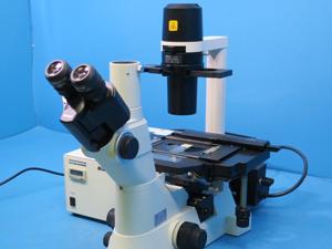 倒立顕微鏡について