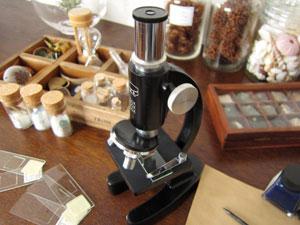 顕微鏡の手入れ方法